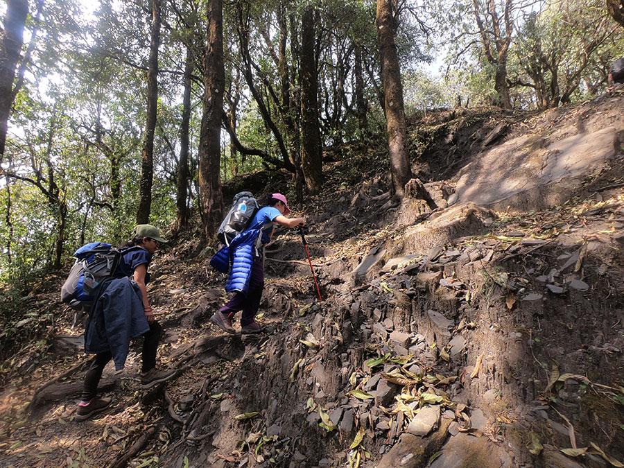 mardi-himal-trek-blog3.jpg